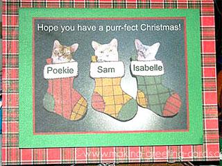 christmas photo card 1