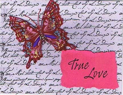 true love butterfly