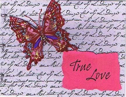 true love butterfly