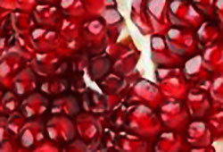pomegranate seeds for pomegranate jelly