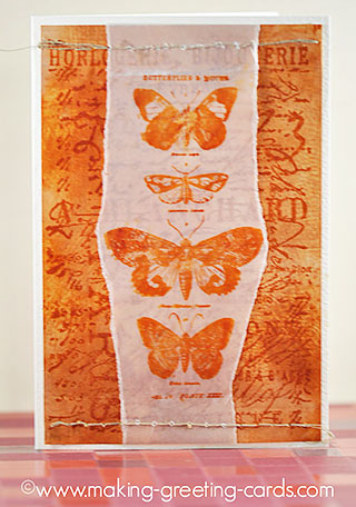 butterfly specimen greeting card